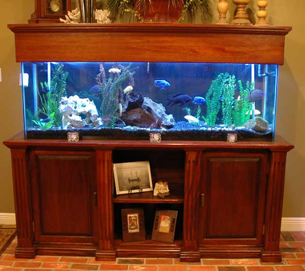 Build Your Own Fish Tank Stand