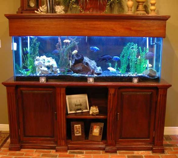 Pdf 55 gallon fish tank stand diy plans diy free wood for Fish tank table stand